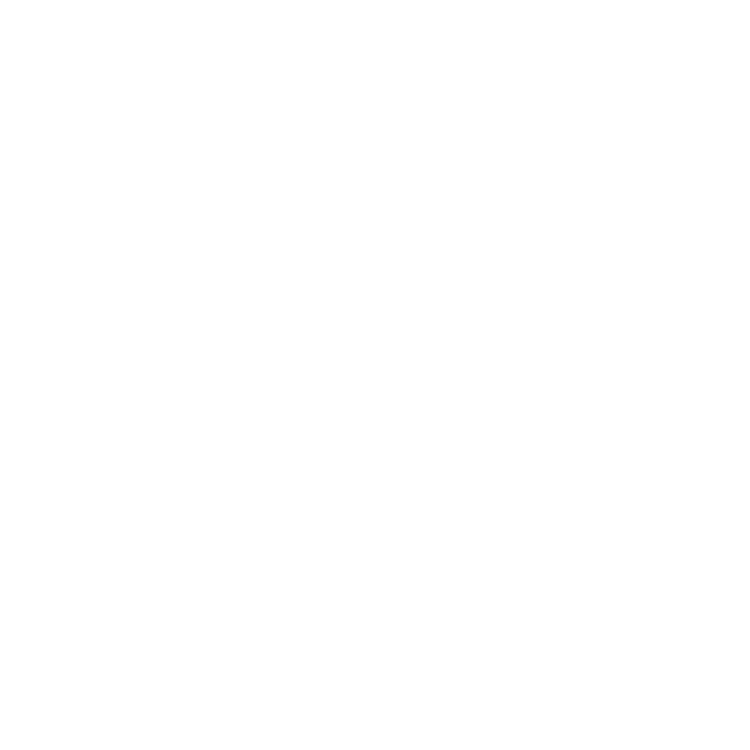 Stories of stones in Fukui and Katsuyama